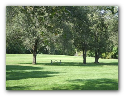 Open Play area at central Park